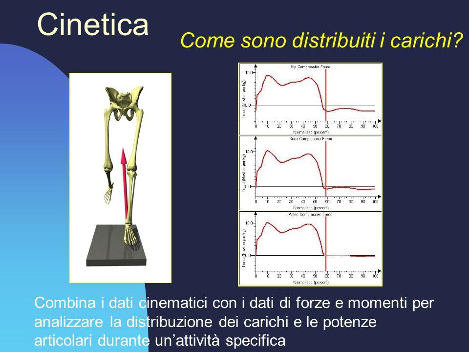 Cinetica Come sono distribuiti i carichi? Combina i dati cinematici con i dati di forze e momenti per analizzare la distribuzione dei carichi e le pot