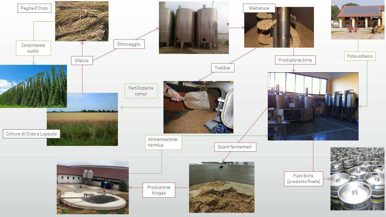 Colture di Orzo e Luppolo Paglia d'Orzo Concimante suolo Stoccaggio Sfalcio Maltatura Trebbie Fertilizzante campi Produzione birra Fusti birra (prodot