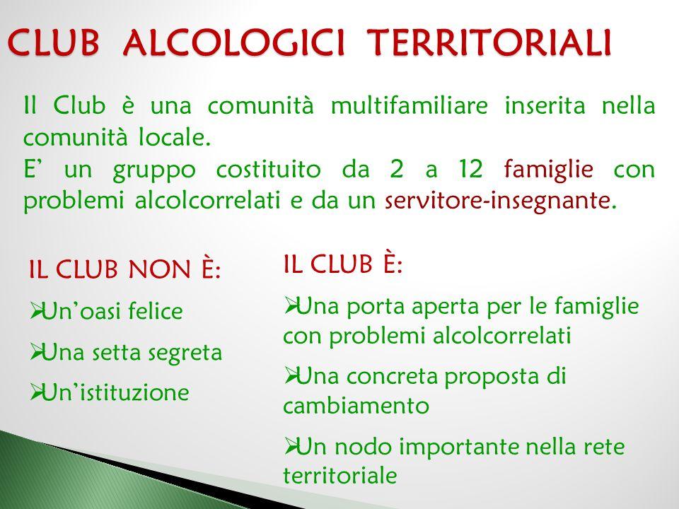  I Club sono enti autonomi e senza scopo di lucro, diffusi a livello locale, provinciale, regionale, nazionale e mondiale.