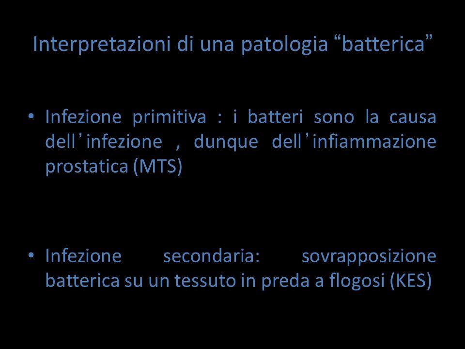 """Interpretazioni di una patologia """" batterica """" Infezione primitiva : i batteri sono la causa dell ' infezione, dunque dell ' infiammazione prostatica"""