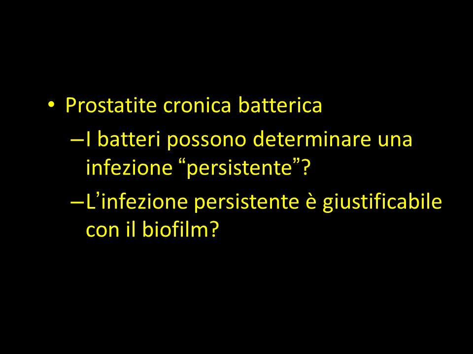 """Prostatite cronica batterica – I batteri possono determinare una infezione """"persistente""""? – L'infezione persistente è giustificabile con il biofilm?"""