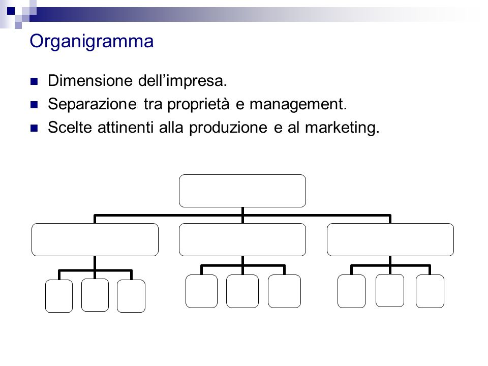 Organigramma Dimensione dell'impresa. Separazione tra proprietà e management. Scelte attinenti alla produzione e al marketing.