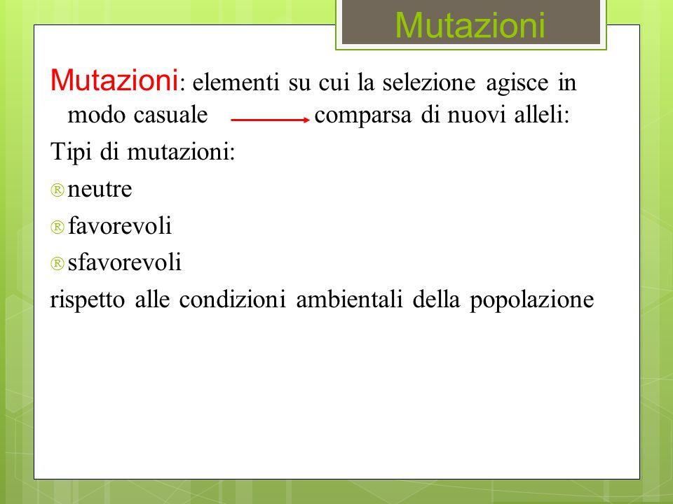 Mutazioni Mutazioni : elementi su cui la selezione agisce in modo casuale comparsa di nuovi alleli: Tipi di mutazioni:  neutre  favorevoli  sfavore