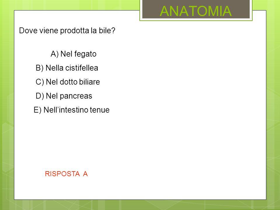 ANATOMIA Dove viene prodotta la bile? A) Nel fegato B) Nella cistifellea C) Nel dotto biliare D) Nel pancreas E) Nell'intestino tenue RISPOSTA A