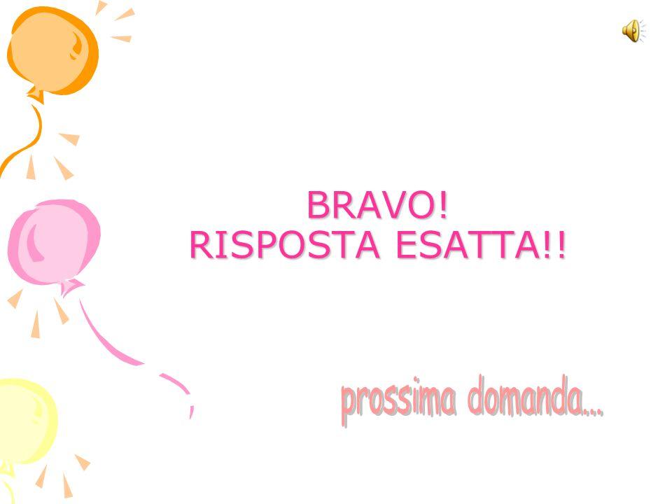 BRAVO! RISPOSTA ESATTA!!