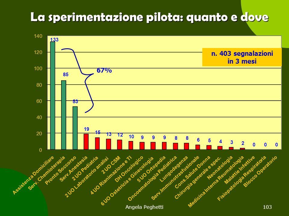 Angela Peghetti103 La sperimentazione pilota: quanto e dove n. 403 segnalazioni in 3 mesi 67%