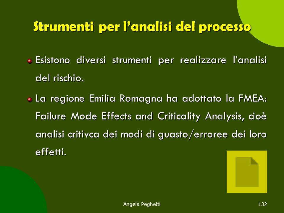 Angela Peghetti132 Strumenti per l'analisi del processo Esistono diversi strumenti per realizzare l'analisi del rischio. La regione Emilia Romagna ha