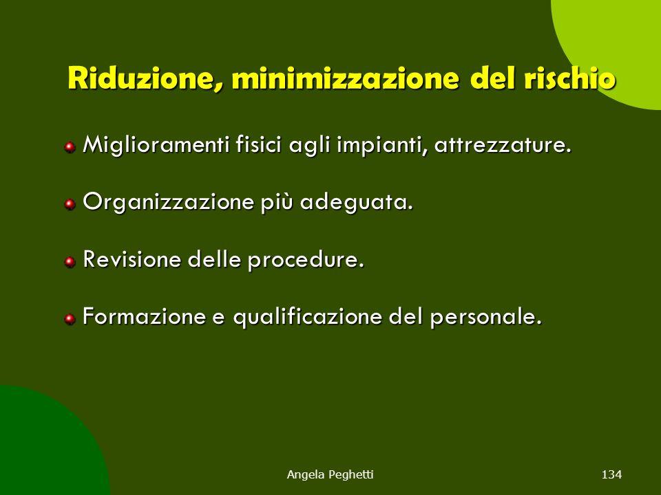 Angela Peghetti134 Riduzione, minimizzazione del rischio Miglioramenti fisici agli impianti, attrezzature. Organizzazione più adeguata. Revisione dell
