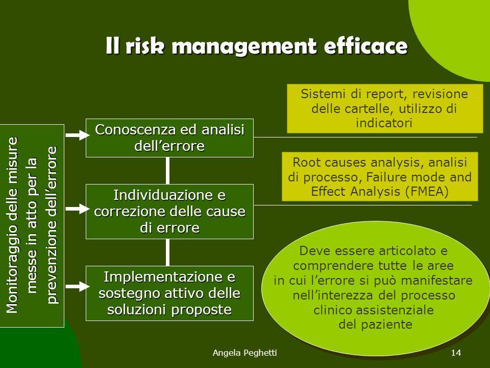 Angela Peghetti14 Conoscenza ed analisi dell'errore Individuazione e correzione delle cause di errore Monitoraggio delle misure messe in atto per la p