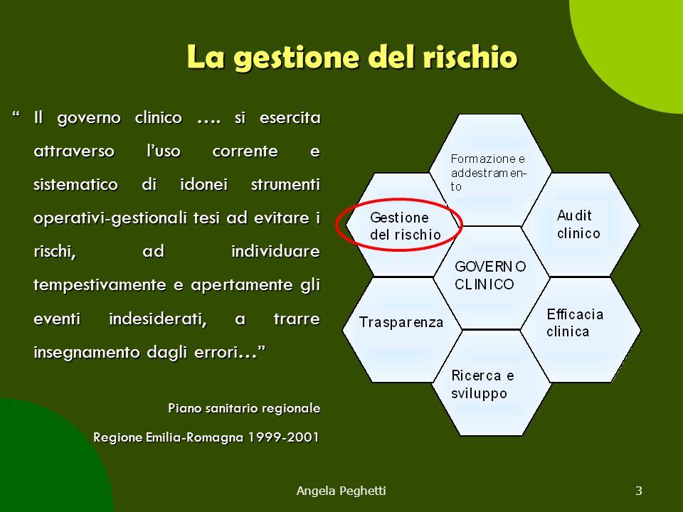 Angela Peghetti114 Root Causes Analysis La RCA si focalizza prima sulle cause di sistema e sui processi, quindi su quelle legate al personale: ad ogni errore umano si associano fattori latenti, legati all'organizzazione o al sistema.