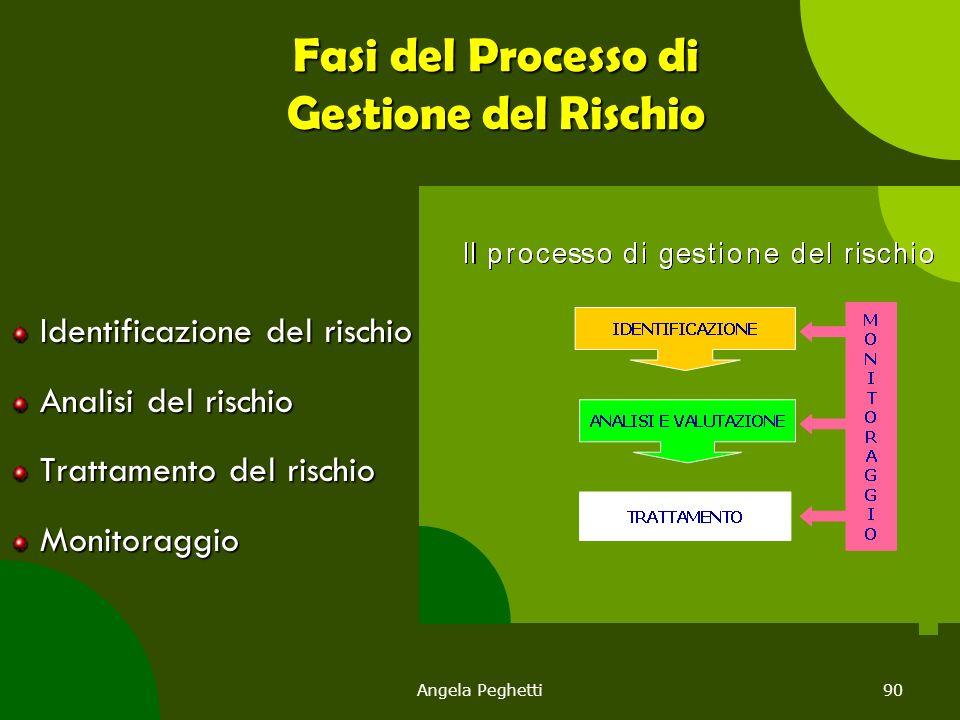Angela Peghetti90 Fasi del Processo di Gestione del Rischio Identificazione del rischio Analisi del rischio Trattamento del rischio Monitoraggio