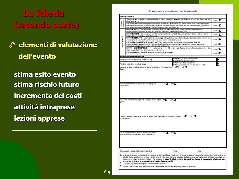 Angela Peghetti96 La Scheda (seconda parte) La Scheda (seconda parte)  elementi di valutazione dell'evento dell'evento stima esito evento stima risch