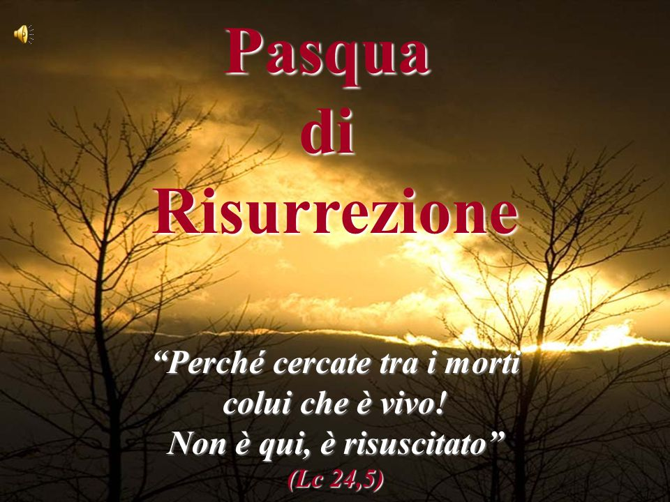 """""""Perché cercate tra i morti colui che è vivo! Non è qui, è risuscitato"""" (Lc 24,5) PasquadiRisurrezione"""