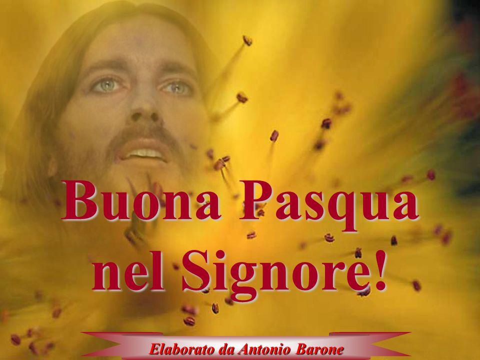 Buona Pasqua nel Signore! Elaborato da Antonio Barone