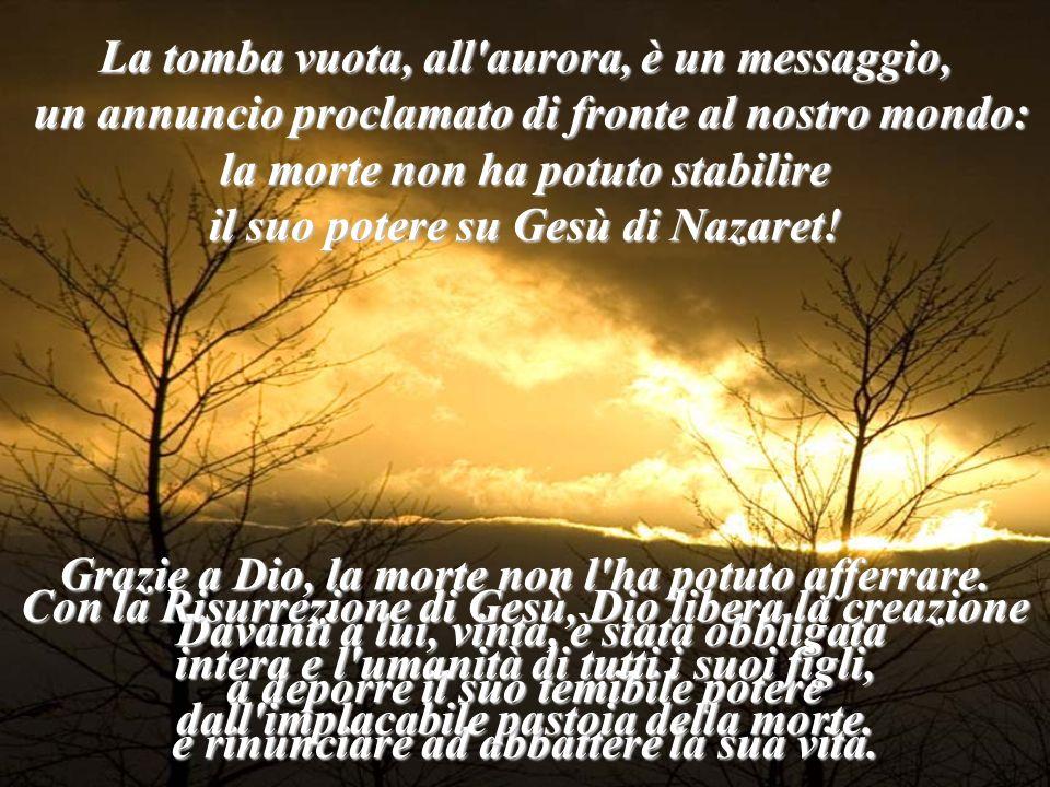 La tomba vuota, all'aurora, è un messaggio, un annuncio proclamato di fronte al nostro mondo: un annuncio proclamato di fronte al nostro mondo: la mor