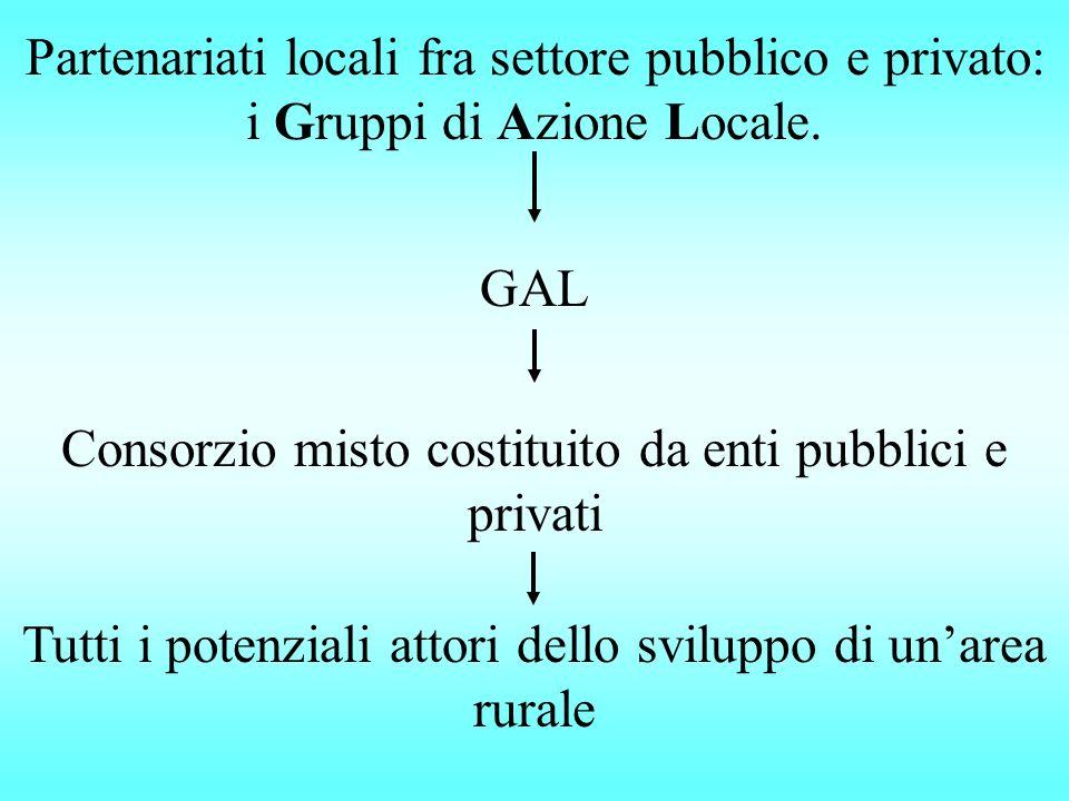Partenariati locali fra settore pubblico e privato: i Gruppi di Azione Locale. GAL Consorzio misto costituito da enti pubblici e privati Tutti i poten