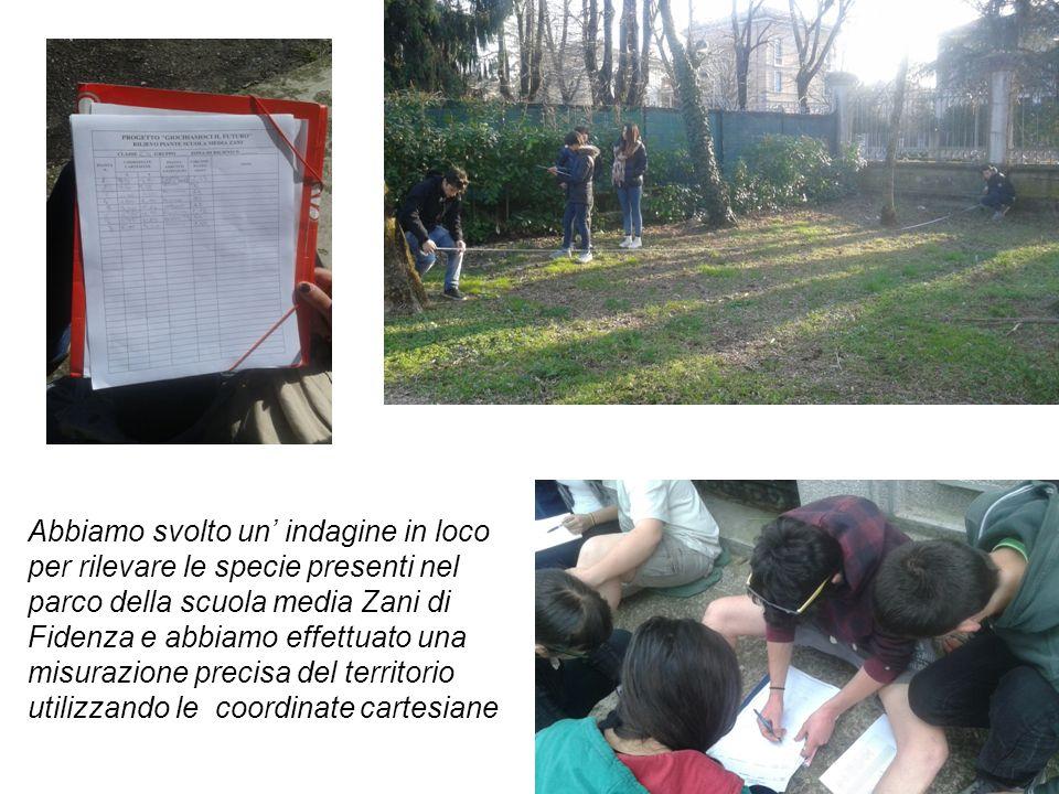 Abbiamo svolto un' indagine in loco per rilevare le specie presenti nel parco della scuola media Zani di Fidenza e abbiamo effettuato una misurazione