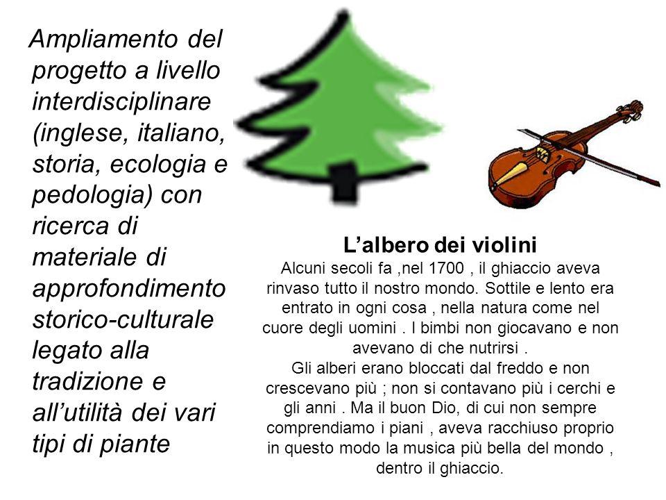 Ampliamento del progetto a livello interdisciplinare (inglese, italiano, storia, ecologia e pedologia) con ricerca di materiale di approfondimento sto