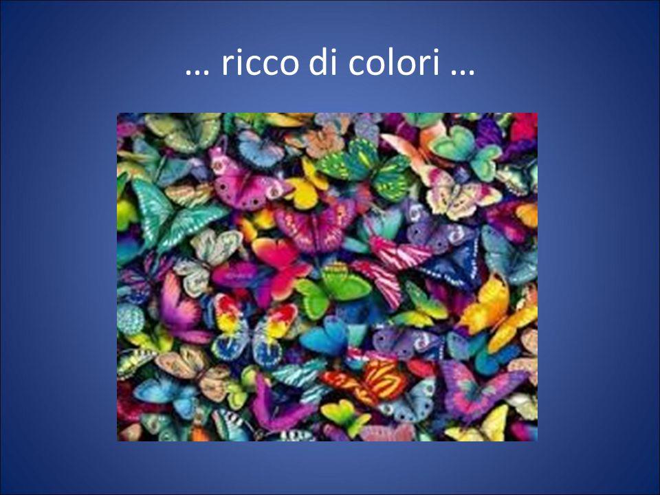 … ricco di colori …