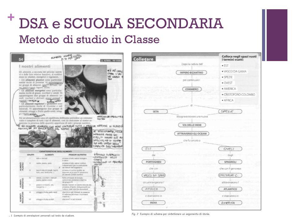 + DSA e SCUOLA SECONDARIA Metodo di studio in Classe