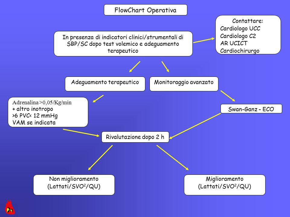 Miglioramento (Lattati/SVO 2 /QU) Rivalutazione dopo 2 h Adeguamento terapeutico Non miglioramento (Lattati/SVO 2 /QU) Monitoraggio avanzato Adrenalin