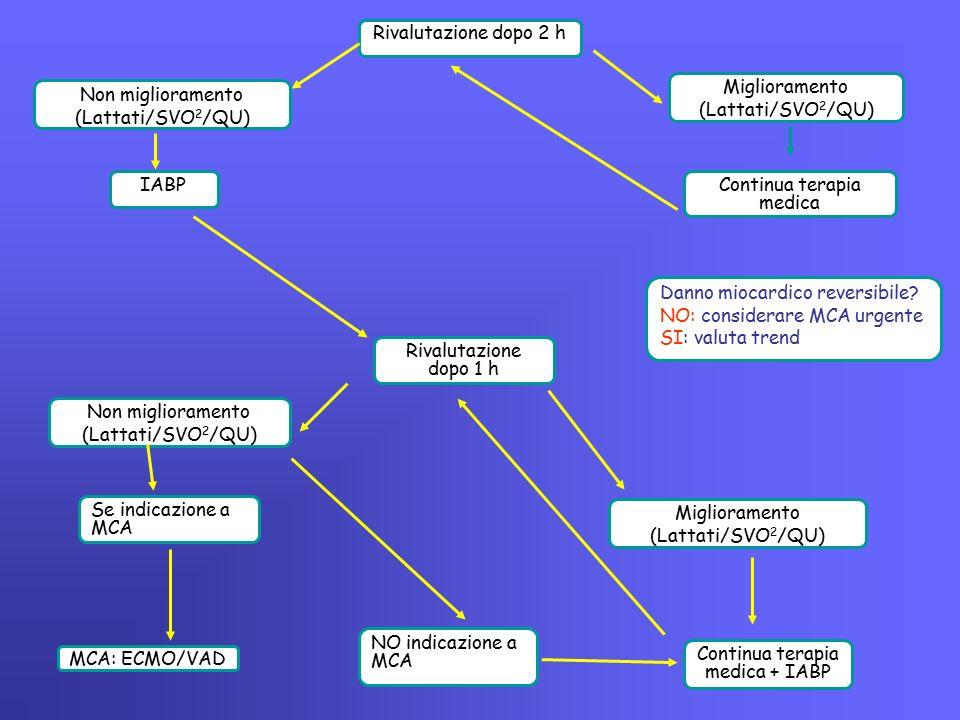 Miglioramento (Lattati/SVO 2 /QU) Rivalutazione dopo 2 h IABP Continua terapia medica Non miglioramento (Lattati/SVO 2 /QU) Rivalutazione dopo 1 h Non