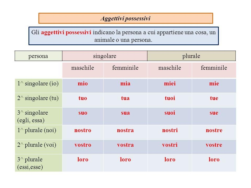 Aggettivi possessivi maschilefemminilemaschilefemminile 1^ singolare (io)miomiamieimie 2^ singolare (tu)tuotuatuoitue 3^ singolare (egli, essa) suosua