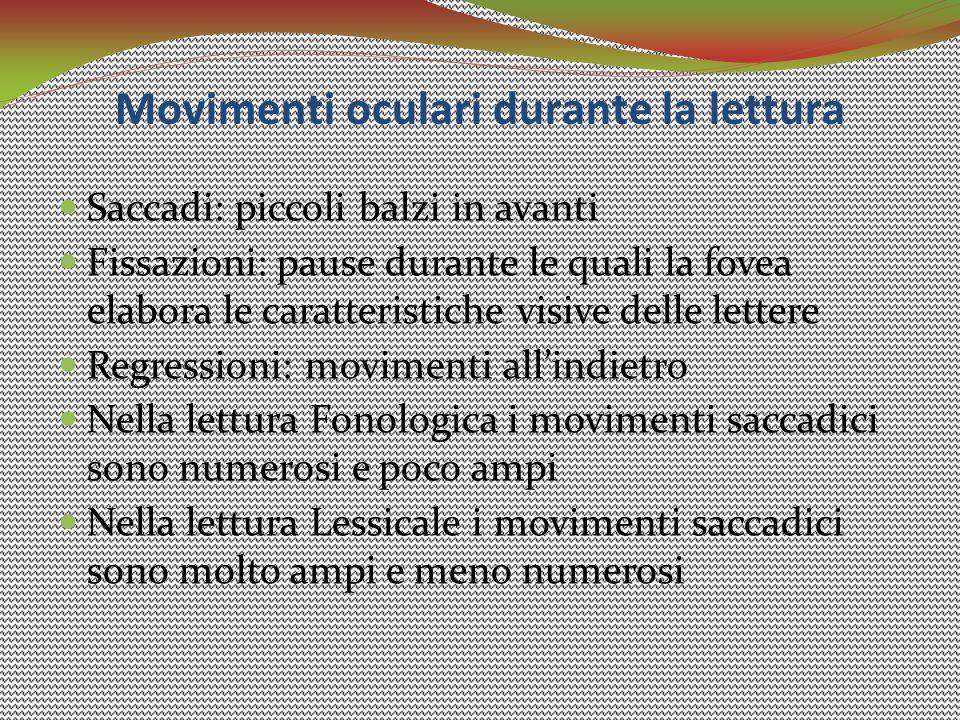 Movimenti oculari durante la lettura Saccadi: piccoli balzi in avanti Fissazioni: pause durante le quali la fovea elabora le caratteristiche visive de