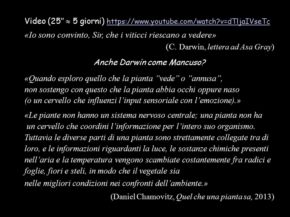 Video (25''  5 giorni) https://www.youtube.com/watch?v=dTljaIVseTc https://www.youtube.com/watch?v=dTljaIVseTc «Io sono convinto, Sir, che i viticci