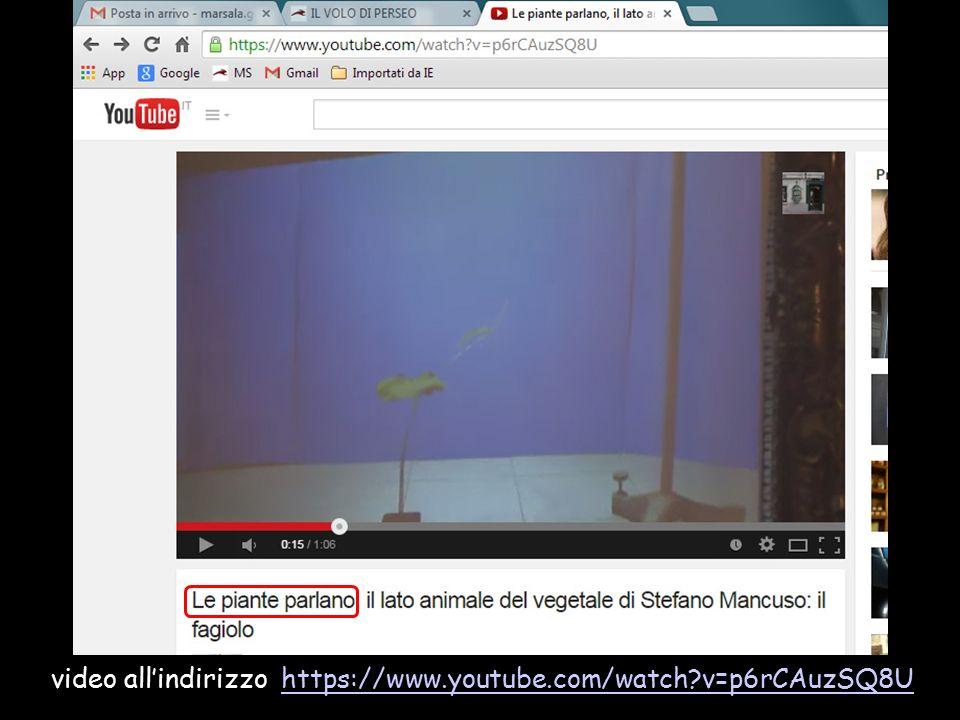 Darwin scoprí anche che, praticando un piccolo intacco su una foglia di Drosera, soltanto una metà della foglia resta paralizzata, come «un uomo dalla spina dorsale fratturata, le cui estremità sono rimaste paralizzate» 'Venere acchiappamosche': pianta insettivora della stessa famiglia della Drosera video https://www.youtube.com/watch?v=xBY_KuCh0K4https://www.youtube.com/watch?v=xBY_KuCh0K4 Differenze con l'esempio precedente.
