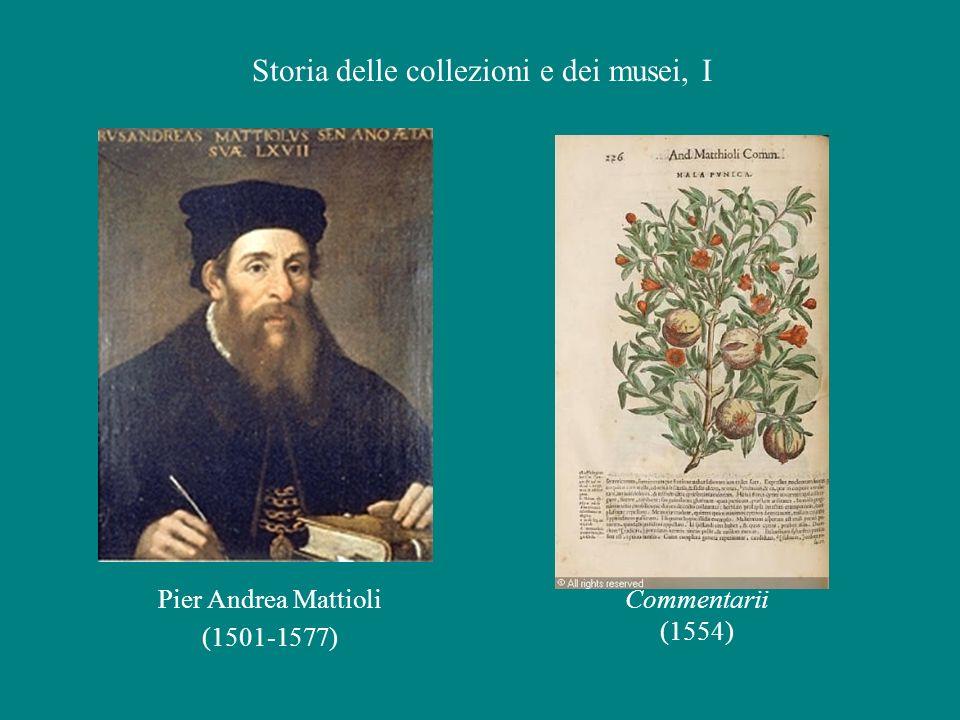 Pier Andrea Mattioli (1501-1577) Commentarii (1554) Storia delle collezioni e dei musei, I