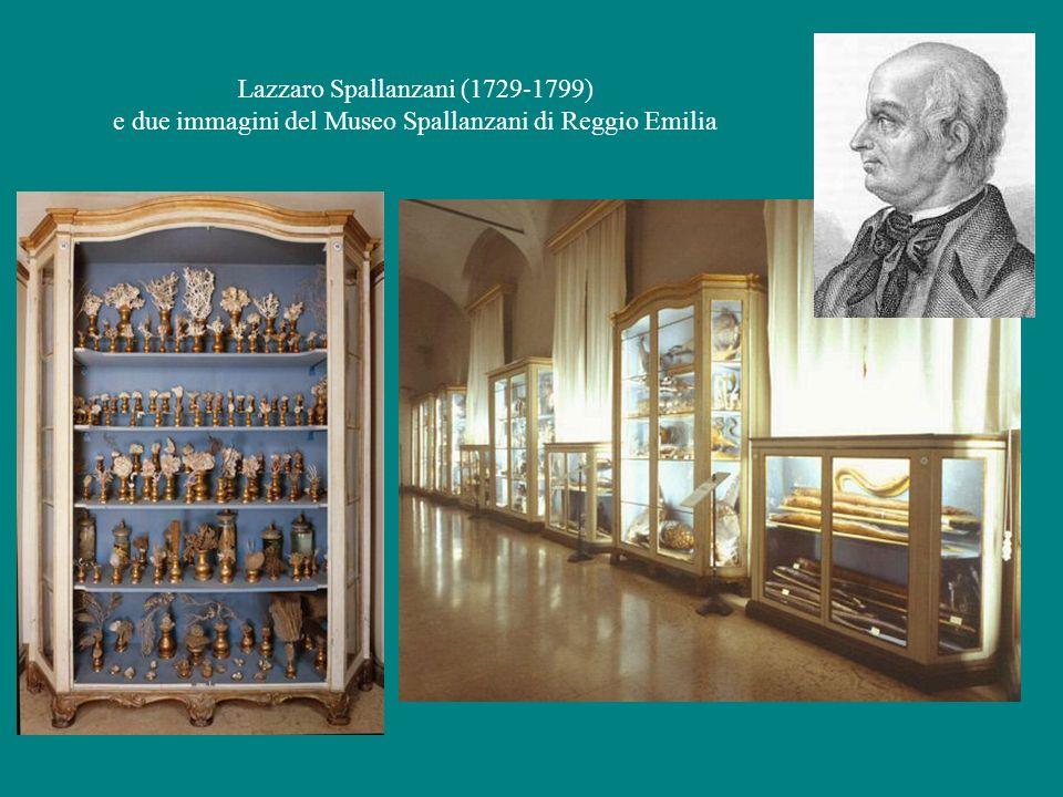 Lazzaro Spallanzani (1729-1799) e due immagini del Museo Spallanzani di Reggio Emilia