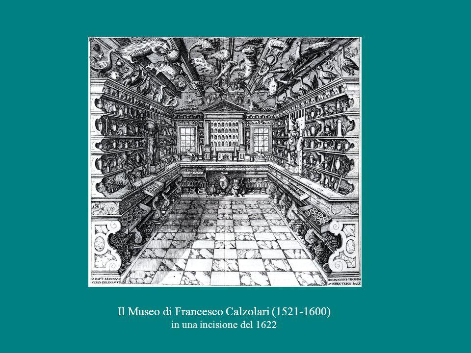 Il Museo di Francesco Calzolari (1521-1600) in una incisione del 1622