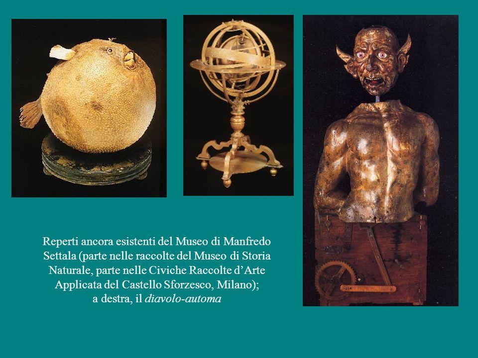 Reperti ancora esistenti del Museo di Manfredo Settala (parte nelle raccolte del Museo di Storia Naturale, parte nelle Civiche Raccolte d'Arte Applica