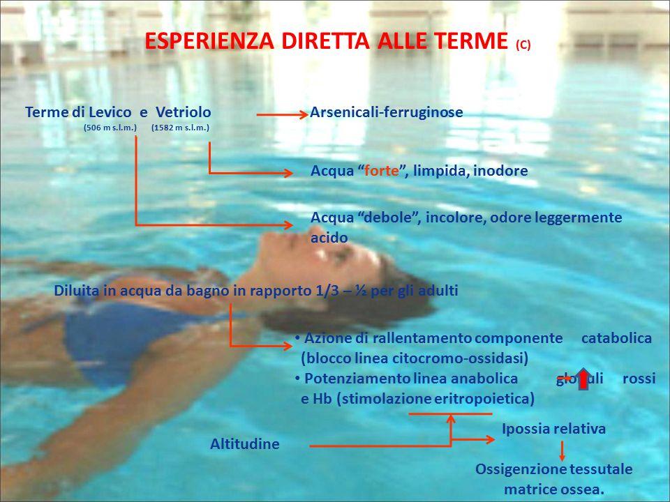 "ESPERIENZA DIRETTA ALLE TERME (C) Terme di Levico e Vetriolo (506 m s.l.m.) (1582 m s.l.m.) Arsenicali-ferruginose Acqua ""forte"", limpida, inodore Acq"