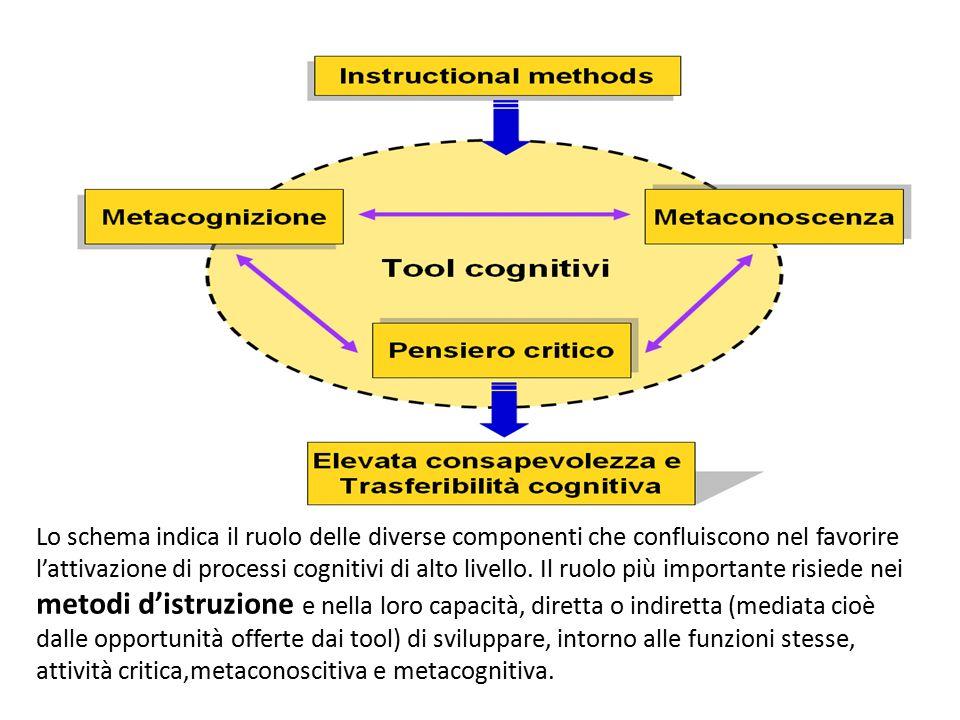 Lo schema indica il ruolo delle diverse componenti che confluiscono nel favorire l'attivazione di processi cognitivi di alto livello. Il ruolo più imp