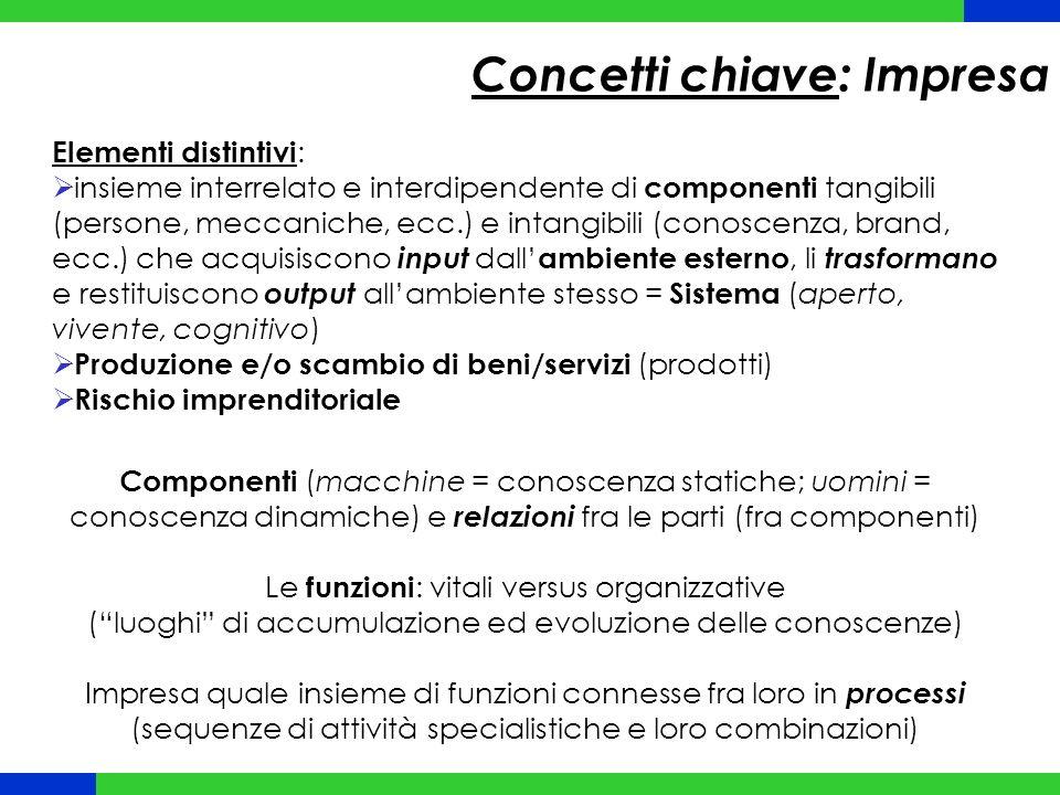 Elementi distintivi :  insieme interrelato e interdipendente di componenti tangibili (persone, meccaniche, ecc.) e intangibili (conoscenza, brand, ec