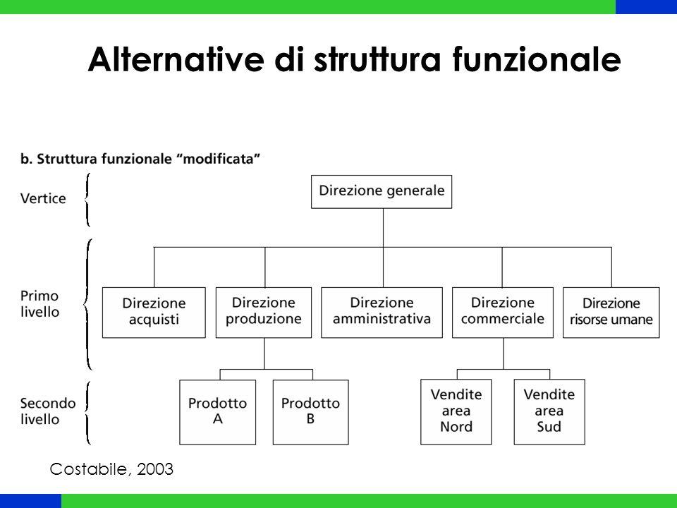 Alternative di struttura funzionale Costabile, 2003