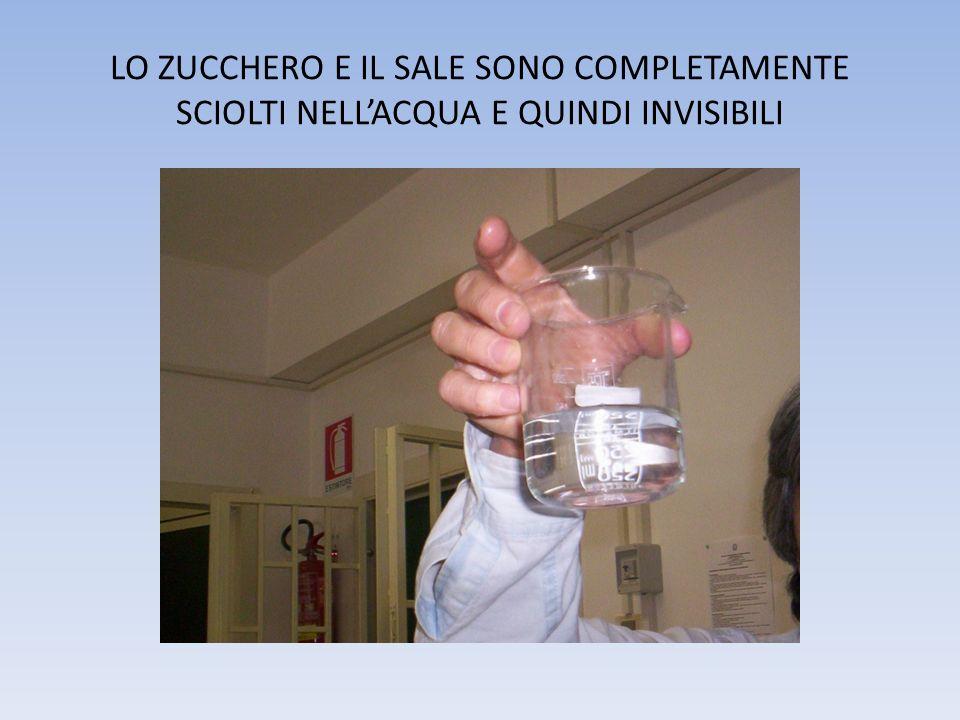 LO ZUCCHERO E IL SALE SONO COMPLETAMENTE SCIOLTI NELL'ACQUA E QUINDI INVISIBILI