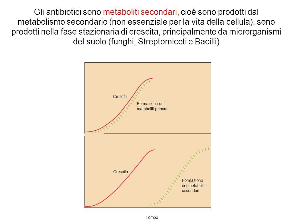 Gli antibiotici sono metaboliti secondari, cioè sono prodotti dal metabolismo secondario (non essenziale per la vita della cellula), sono prodotti nella fase stazionaria di crescita, principalmente da microrganismi del suolo (funghi, Streptomiceti e Bacilli)