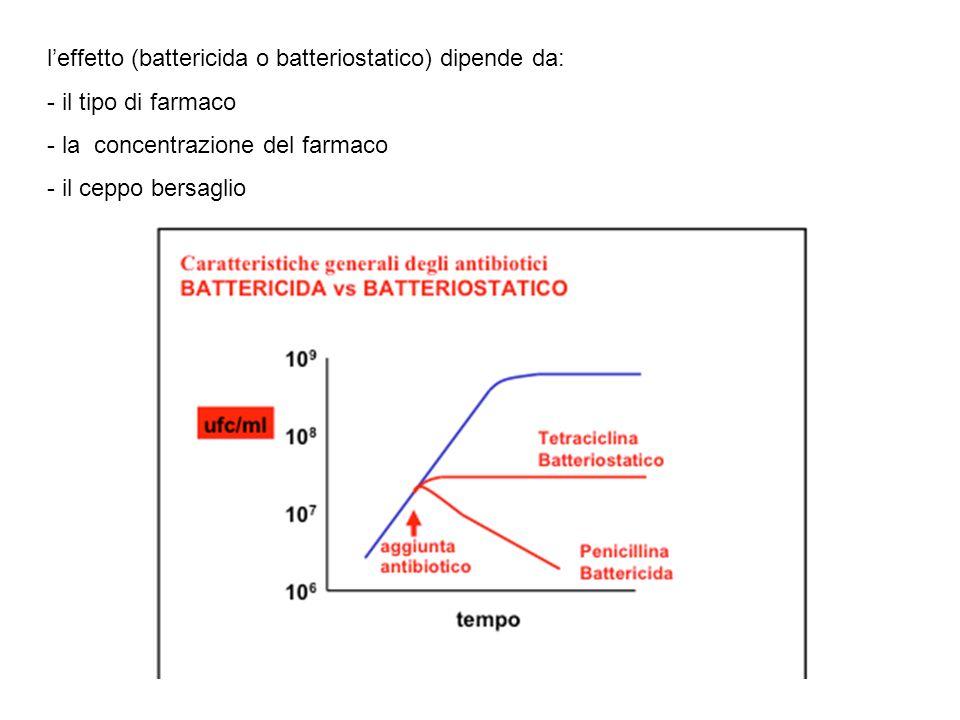 l'effetto (battericida o batteriostatico) dipende da: - il tipo di farmaco - la concentrazione del farmaco - il ceppo bersaglio