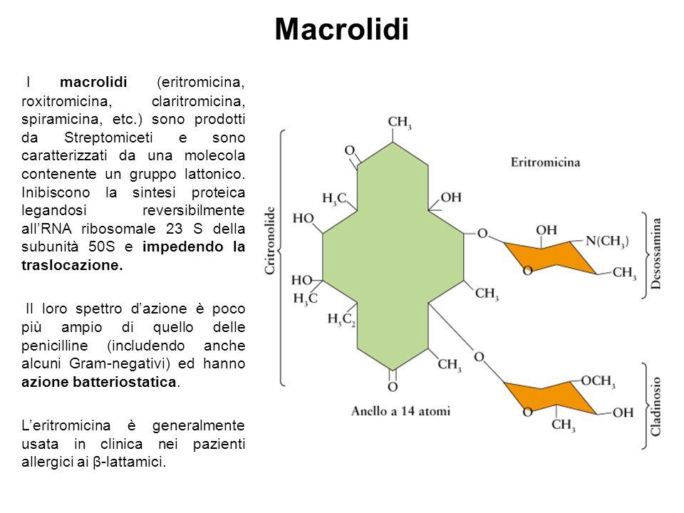 Macrolidi I macrolidi (eritromicina, roxitromicina, claritromicina, spiramicina, etc.) sono prodotti da Streptomiceti e sono caratterizzati da una molecola contenente un gruppo lattonico.