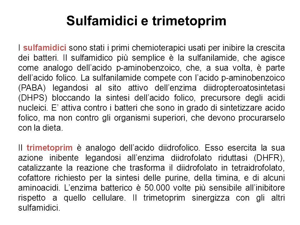 Sulfamidici e trimetoprim I sulfamidici sono stati i primi chemioterapici usati per inibire la crescita dei batteri.