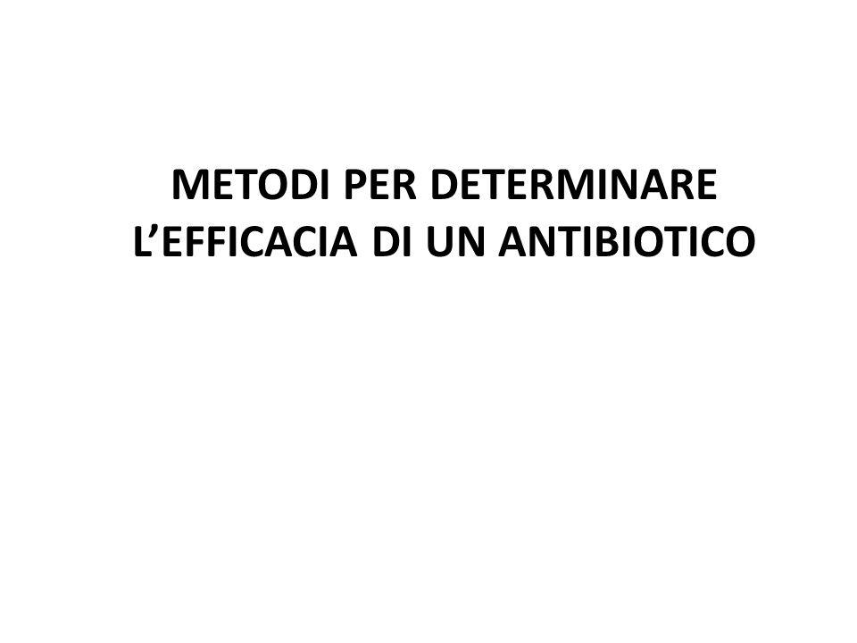 METODI PER DETERMINARE L'EFFICACIA DI UN ANTIBIOTICO
