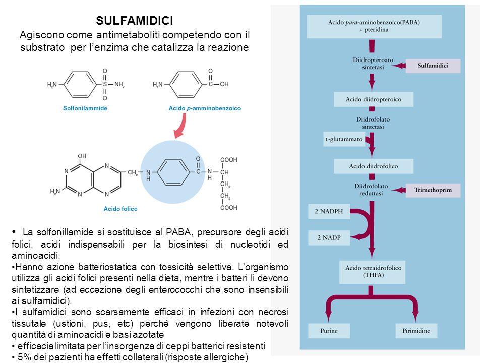 SULFAMIDICI Agiscono come antimetaboliti competendo con il substrato per l'enzima che catalizza la reazione La solfonillamide si sostituisce al PABA, precursore degli acidi folici, acidi indispensabili per la biosintesi di nucleotidi ed aminoacidi.