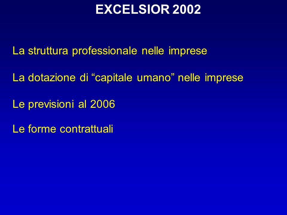 EXCELSIOR 2002 La struttura professionale nelle imprese La dotazione di capitale umano nelle imprese Le previsioni al 2006 Le forme contrattuali