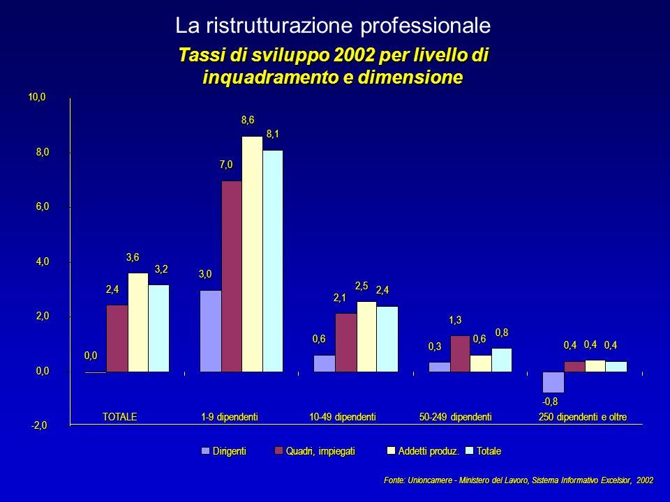 La ristrutturazione professionale Tassi di sviluppo 2002 per livello di inquadramento e dimensione Fonte: Unioncamere - Ministero del Lavoro, Sistema Informativo Excelsior, 2002 0,0 3,0 0,6 0,3 -0,8 2,4 7,0 2,1 1,3 0,4 3,6 8,6 2,5 0,6 0,4 3,2 8,1 2,4 0,8 0,4 -2,0 0,0 2,0 4,0 6,0 8,010,0TOTALE 1-9 dipendenti 10-49 dipendenti 50-249 dipendenti 250 dipendenti e oltre Dirigenti Quadri, impiegati Addetti produz.