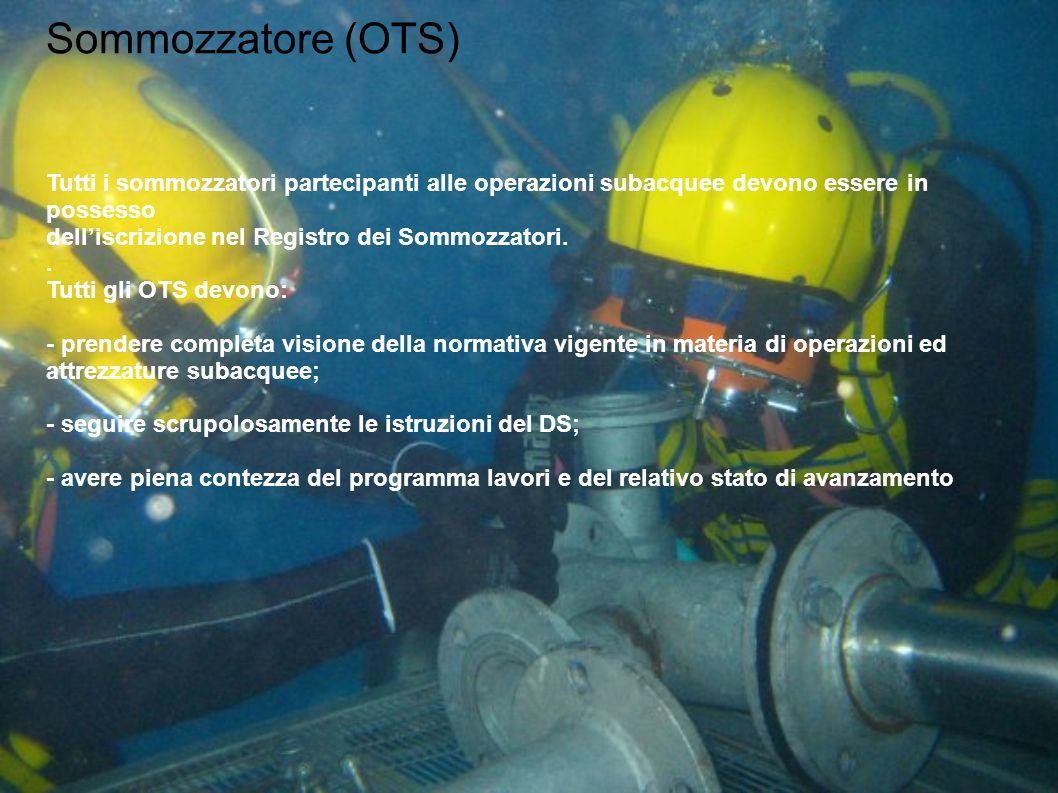 Sommozzatore (OTS) Tutti i sommozzatori partecipanti alle operazioni subacquee devono essere in possesso dell'iscrizione nel Registro dei Sommozzatori