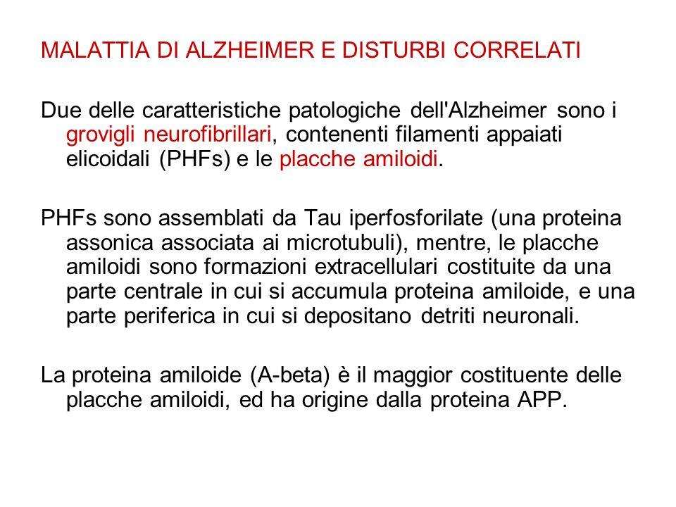 MALATTIA DI ALZHEIMER E DISTURBI CORRELATI Due delle caratteristiche patologiche dell Alzheimer sono i grovigli neurofibrillari, contenenti filamenti appaiati elicoidali (PHFs) e le placche amiloidi.