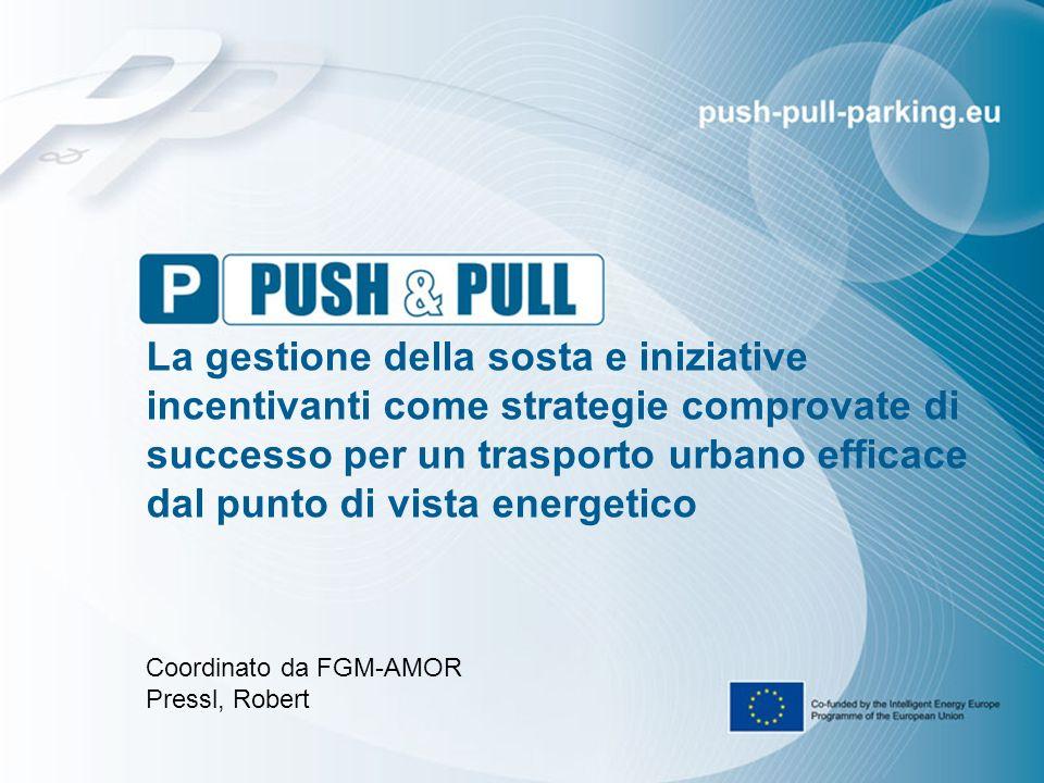 push-pull-parking.eu 2 Dati Essenziali Push&Pull in una frase La gestione della sosta e le iniziative incentivanti come strategie comprovate di successo per un trasporto urbano efficace dal punto di vista energetico I numeri principali 36 mesi di durata (Marzo 2014 – Febbraio 2017) 15 partner Europei (AT, ES, SE, UK, BE, PL, RO, NL,SI, DE) 8 città / istituzioni sono partner Budget: € 1.839.840 75 % IEE funding (€ 1.379.880)